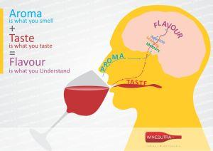 aroma-taste-flavour