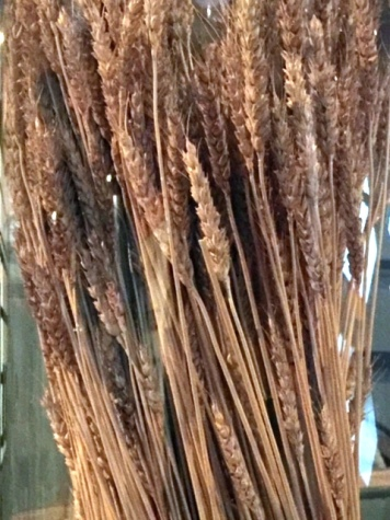 photo-6-colonial-wheat